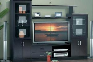 tv cabinet assembly service