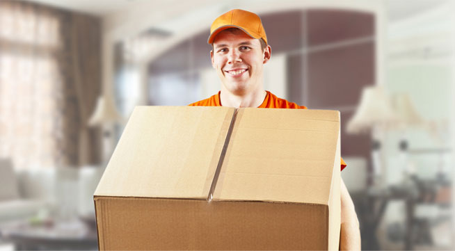 Professional Removal Company